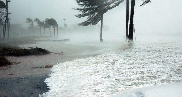 Se préparer à un ouragan