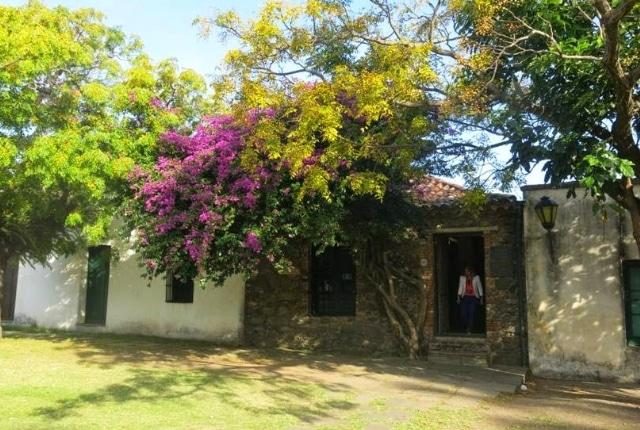 Le musée portugais ou Museo Portugues