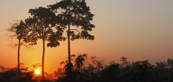 Voyager seul au Libéria
