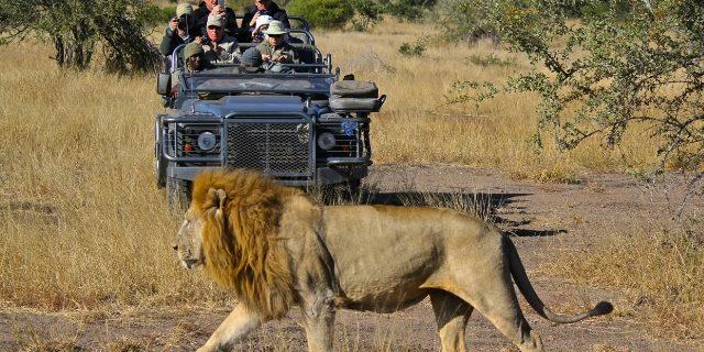 Réserve nationale de chasse de Yankari