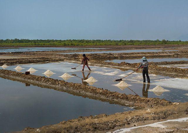 Kampot et ses champs de sel: